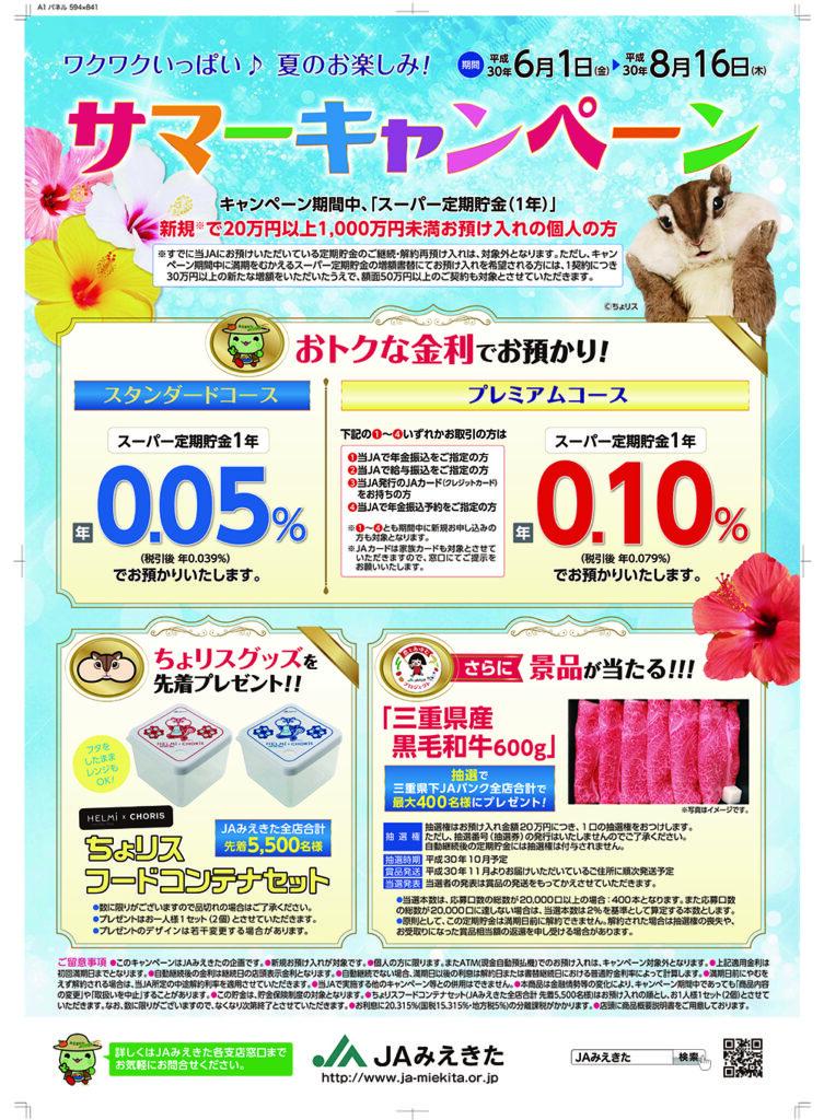 3_miekita_summer17_A1