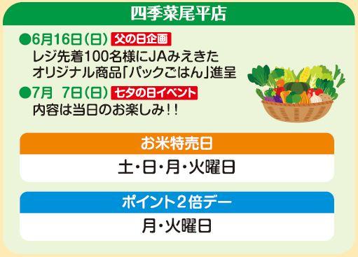 四季菜 尾平